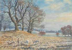 1753 Petworth Park Sussex wc45x67