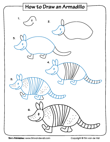 how to draw an armadillo # 9