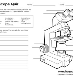 microscope worksheet parts of a microscope quiz [ 1200 x 927 Pixel ]