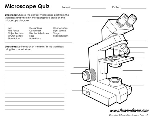 small resolution of microscope worksheet parts of a microscope quiz