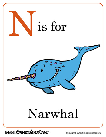n is for narwhal