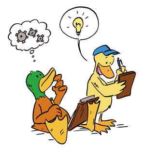 ducks-ideas-300