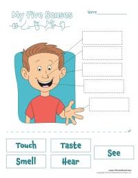 five-senses-worksheet - Tim's Printables