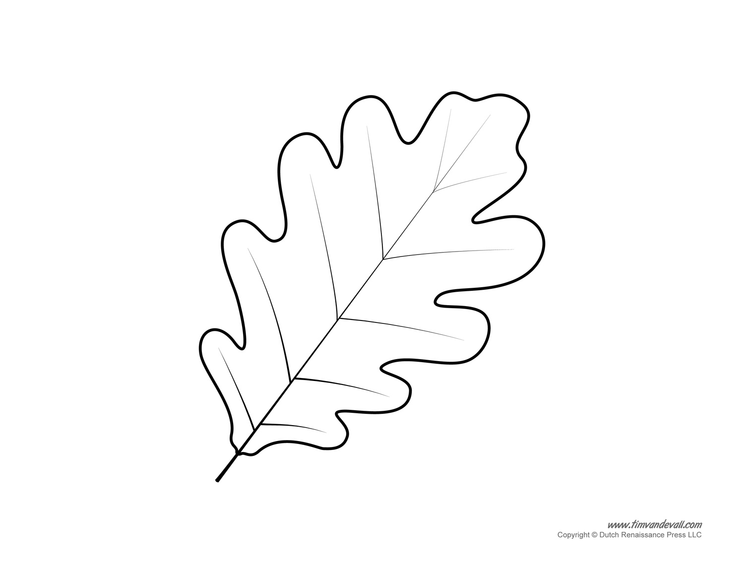 Oak Tree Leaves Coloring Pages