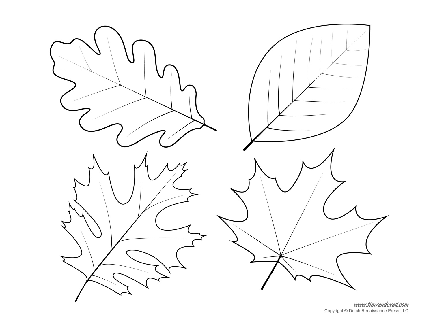 Leaf Templates Amp Leaf Coloring Pages For Kids
