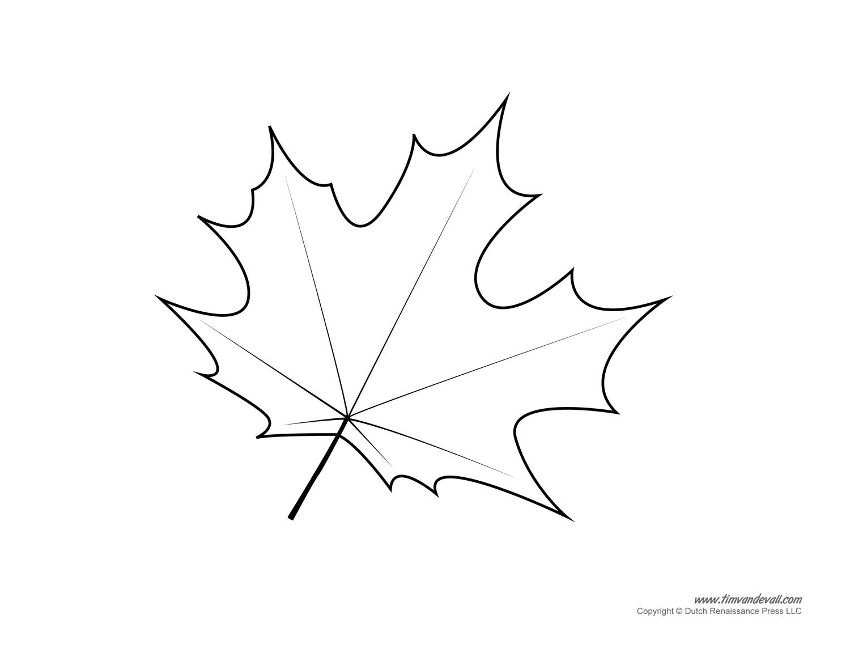 Leaf Templates Amp Leaf Coloring Pages For Kids