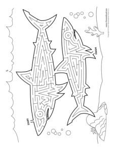 Shark Maze Activity