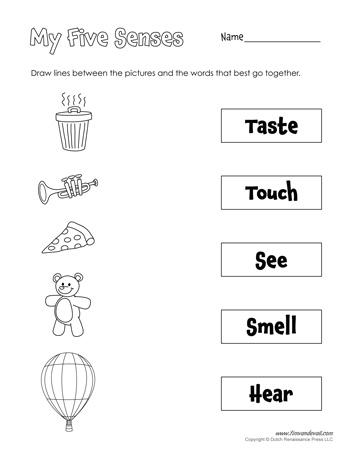 printable five senses worksheet