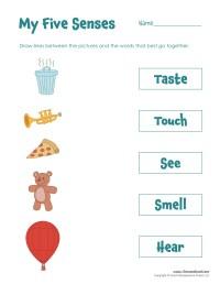 Five Senses Matching - Tim's Printables