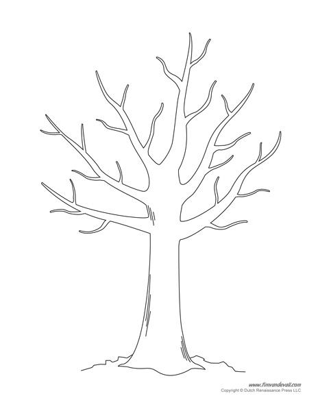 Tree Drawing
