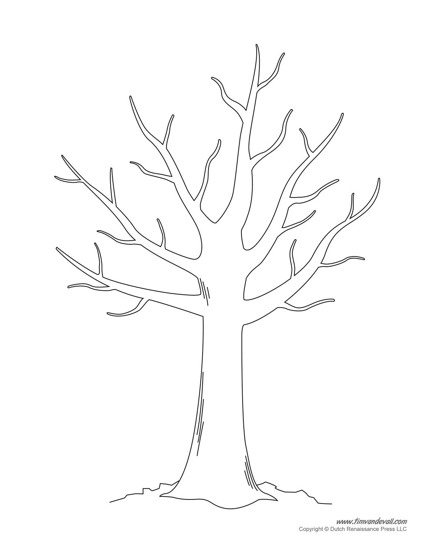 Tree Templates Tree Printables