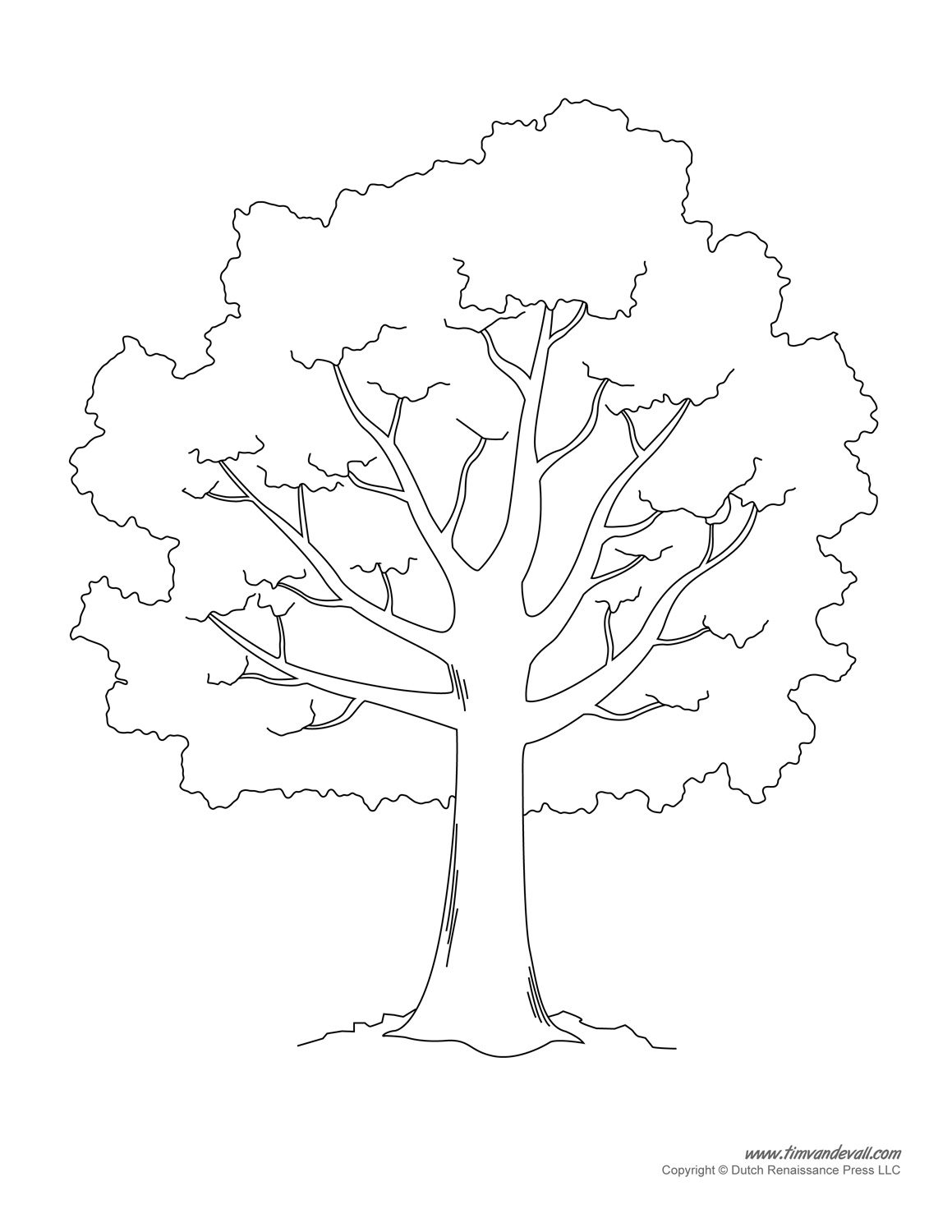Mesmerizing image intended for tree outline printable