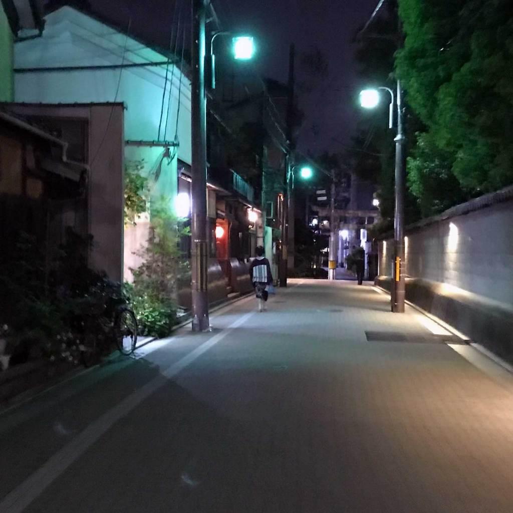Japan Kyoto Geisha 01