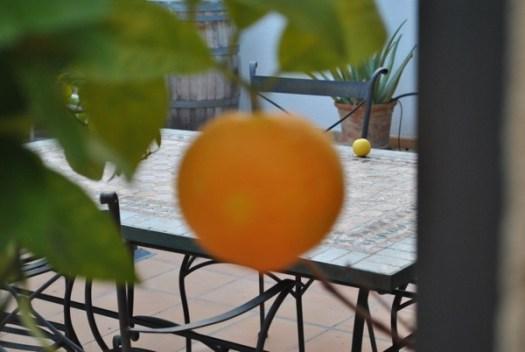 Mallorca apelsin