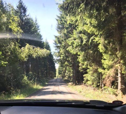 Hallands skogar