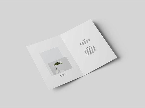 free premium brochure mockups