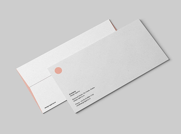 standard dl envelope mockup