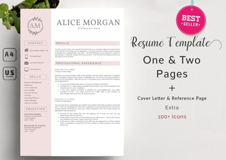 professional resume template 2020 clean resume template