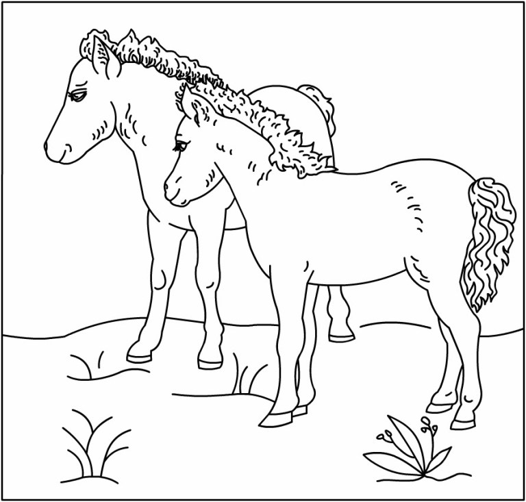 two animal horse coloring printable