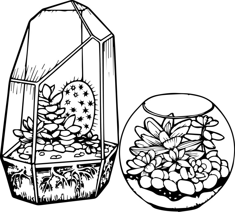 cactus and succulent printable photos