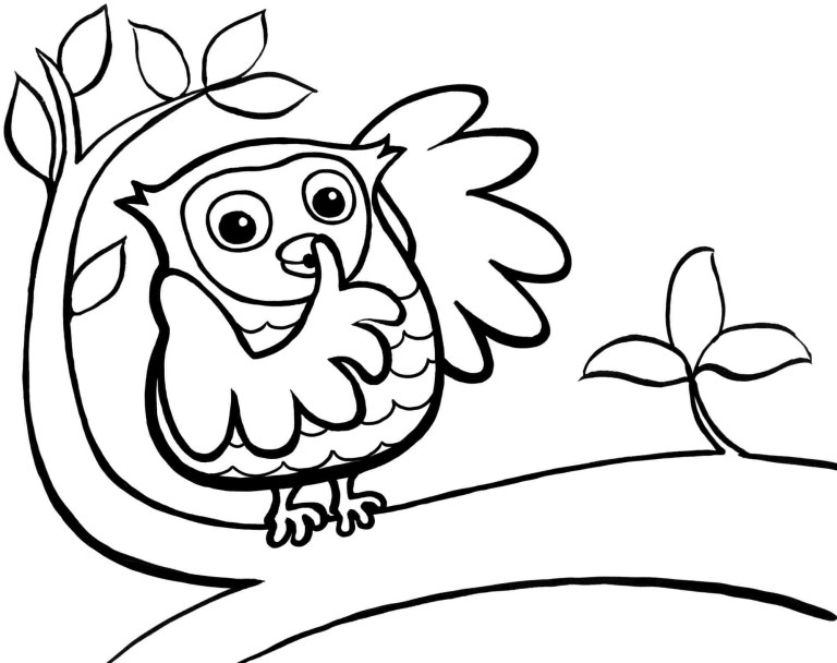 cute owl coloring pages to printable pictures