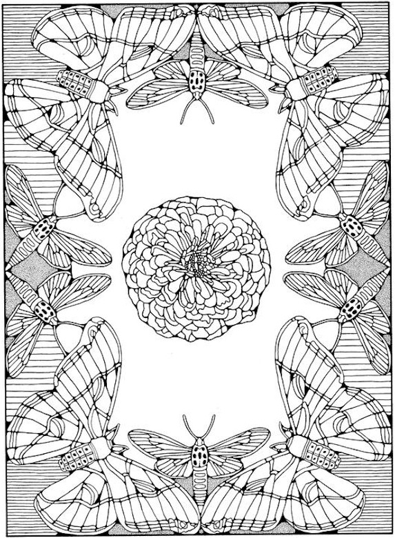 free printable fall coloring pages for adults to color