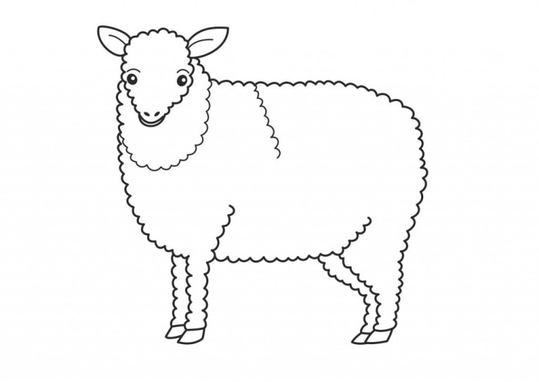 free printable lamb coloring pages for kids