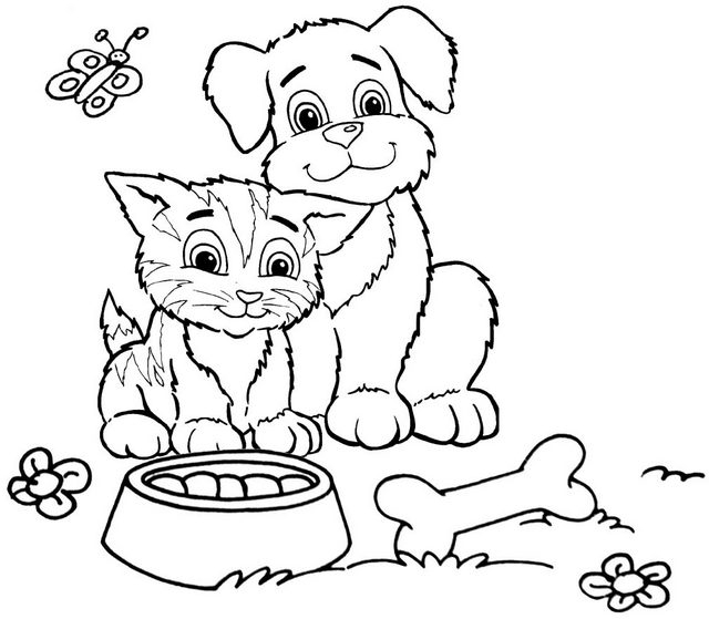 happy dog and cat ready to downloads free image