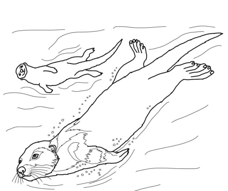 Printable Otter Coloring Pages