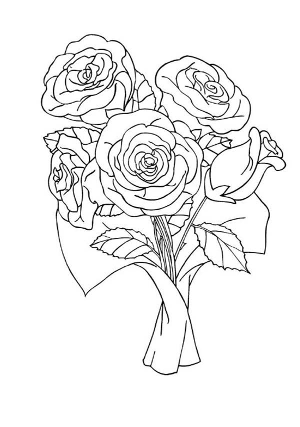 red rose coloring free downloads