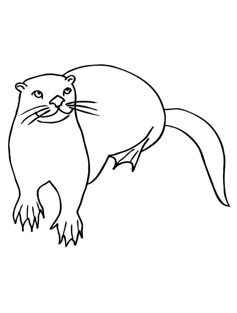 Sea Otter Color Page