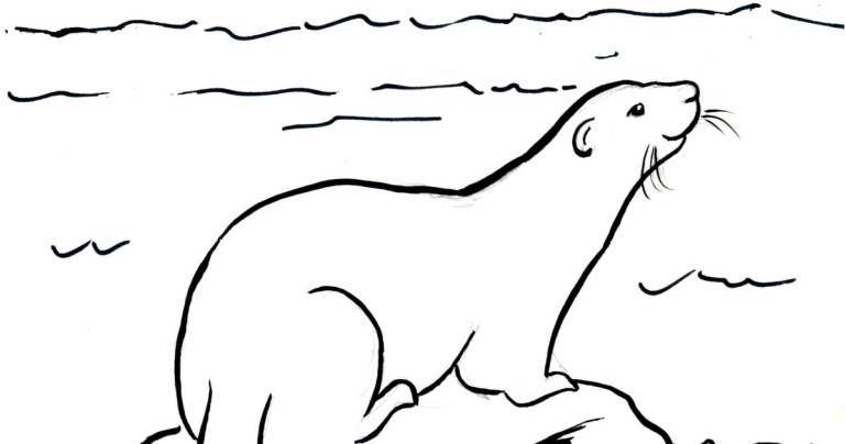 Sea Otters Coloring Pages