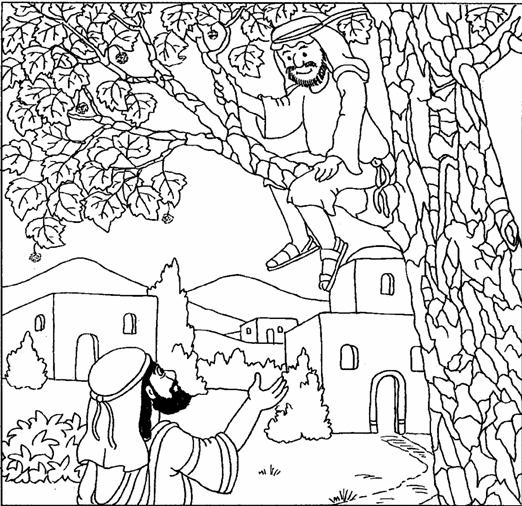 zacchaeus coloring for kids