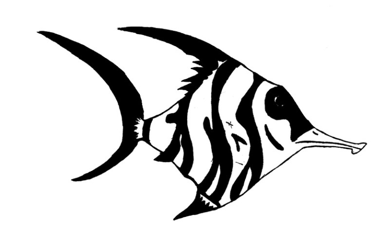 Angel Fish Outline