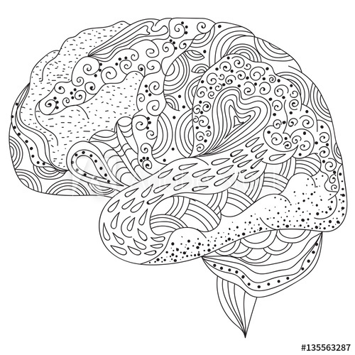Brain Picture Worksheet