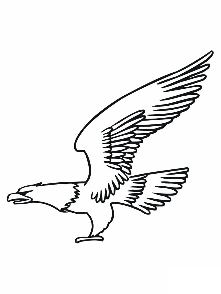 Free Bald Eagle Coloring Page