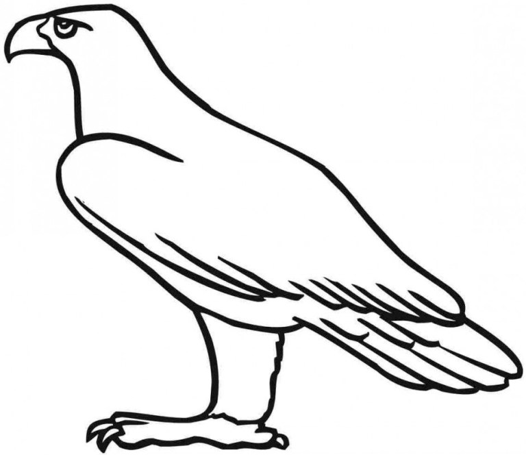 Free Coloring Pages Of Eagles