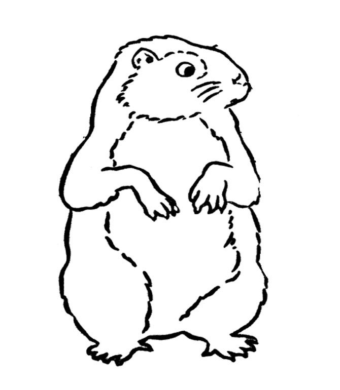Ground Hog Day Coloring Sheets