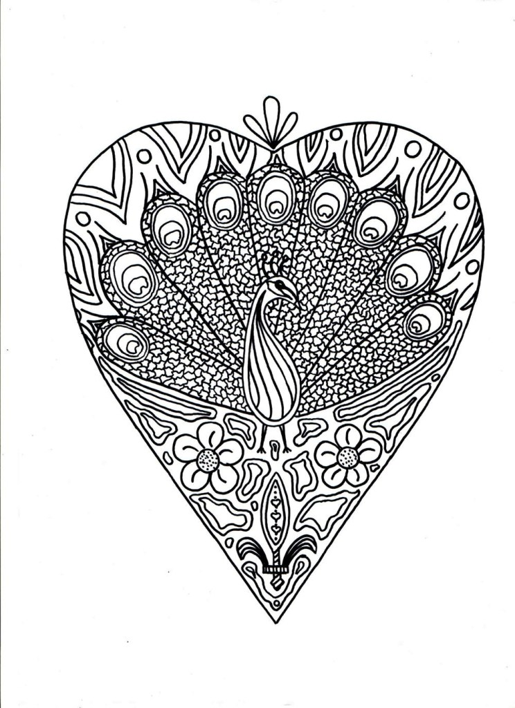 Peacock Adult Coloring Pages