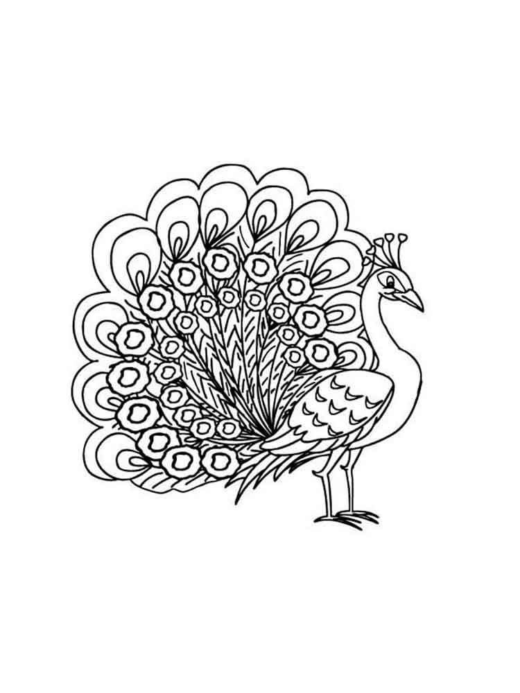 Peacock Coloring Sheets