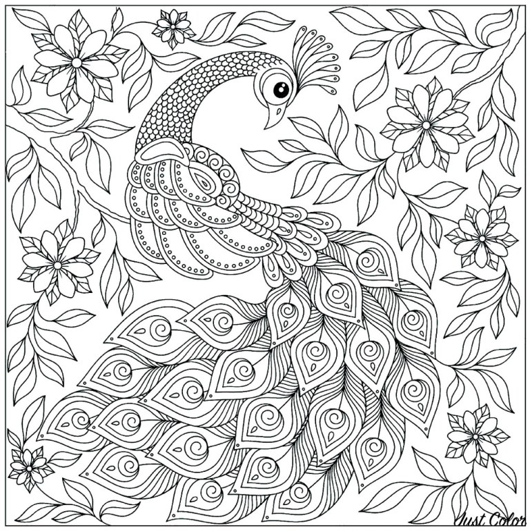 Peacock Feathers Coloring Page
