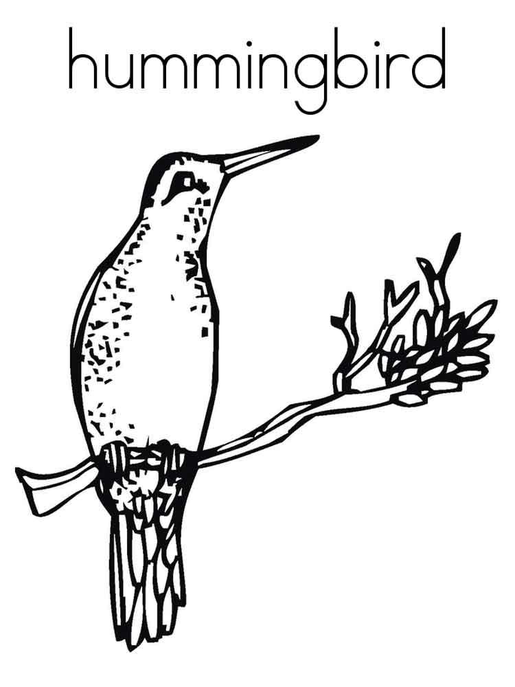 Printable Hummingbird