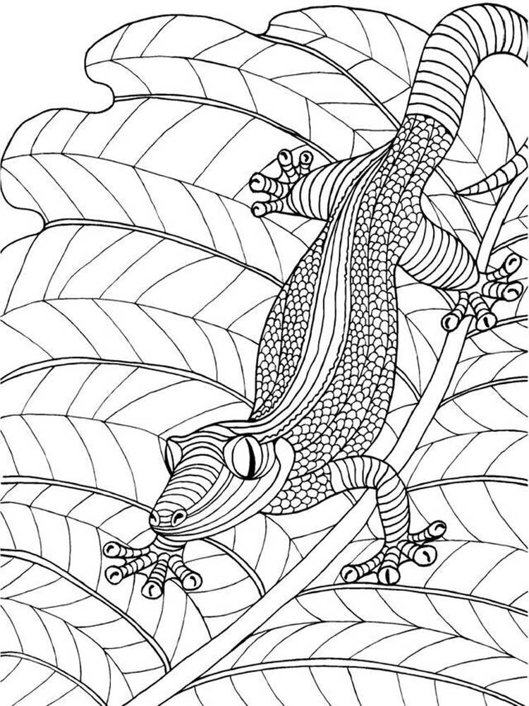 Printable Lizards