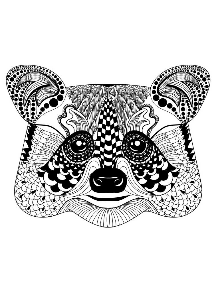 Raccoon Coloring Pictures