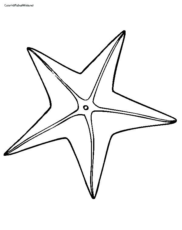 Starfish Printables
