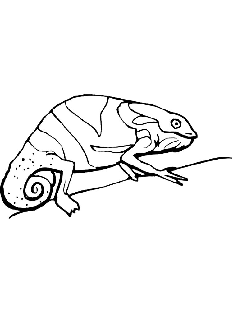 The Mixed Up Chameleon Coloring Page