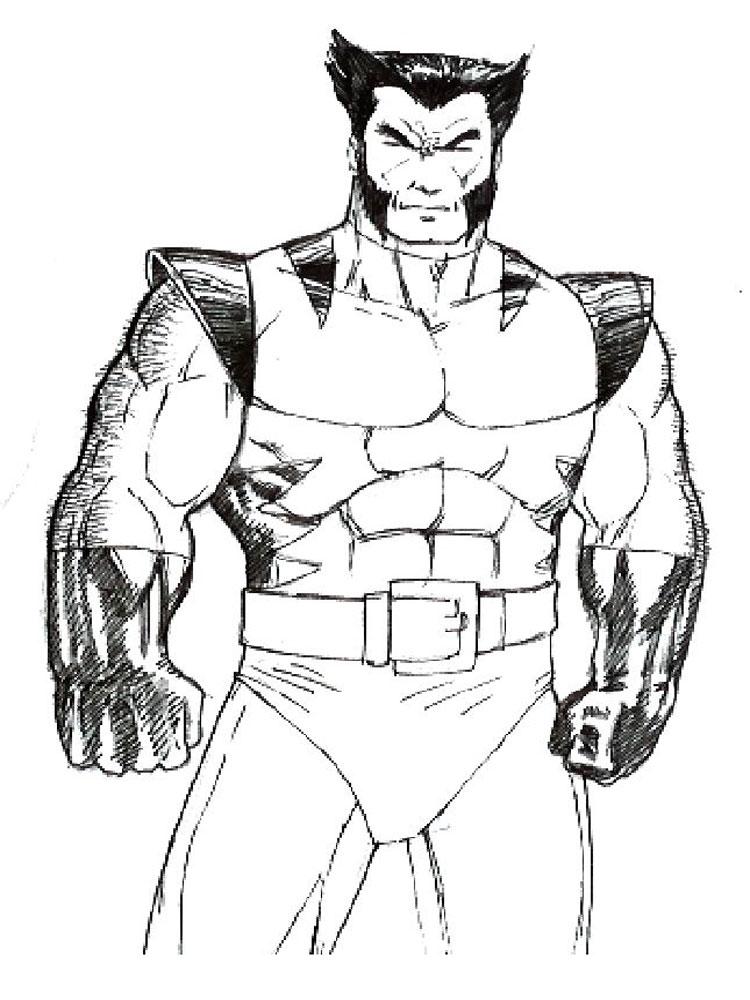 Wolverine Color Page