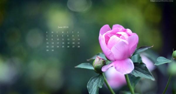 June Desktop Calendar Download!