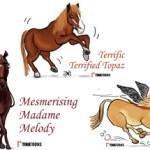 horse-caricatures
