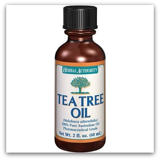 Image Result For What Are The Benefits Of Tea Tree Oil